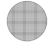 21mm Dia., 1mm Squares, Microscope Eyepiece Reticle